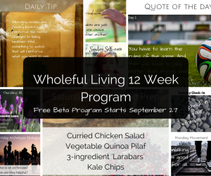 12week sample daily postswith label (1)